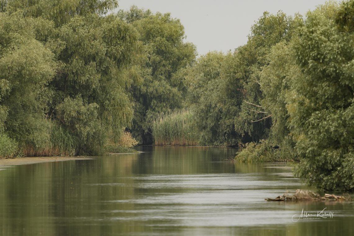 Donau Deltaet 17 1