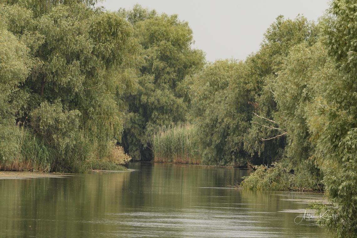 Donau Deltaet 18 1