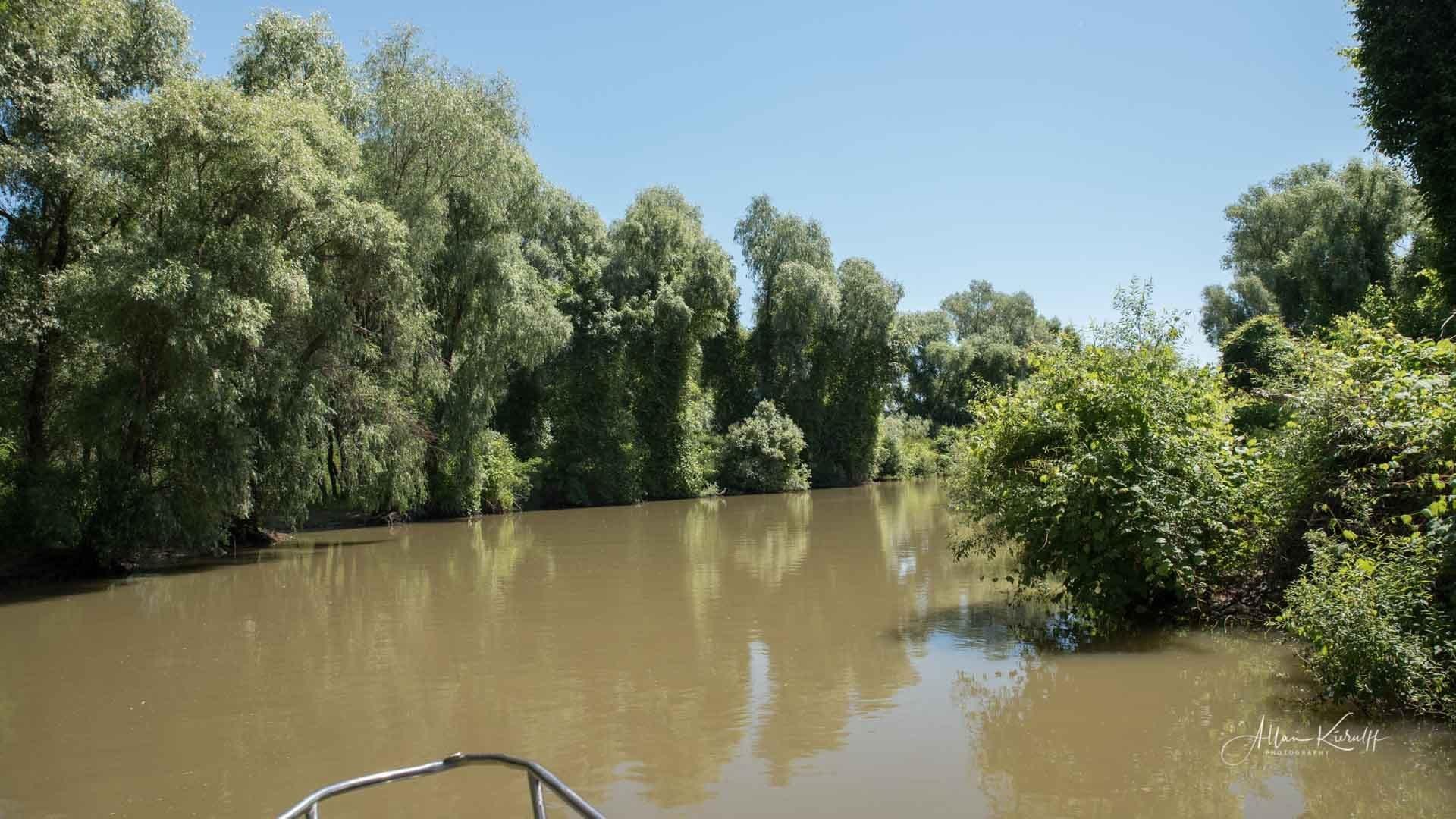 Donau Deltaet