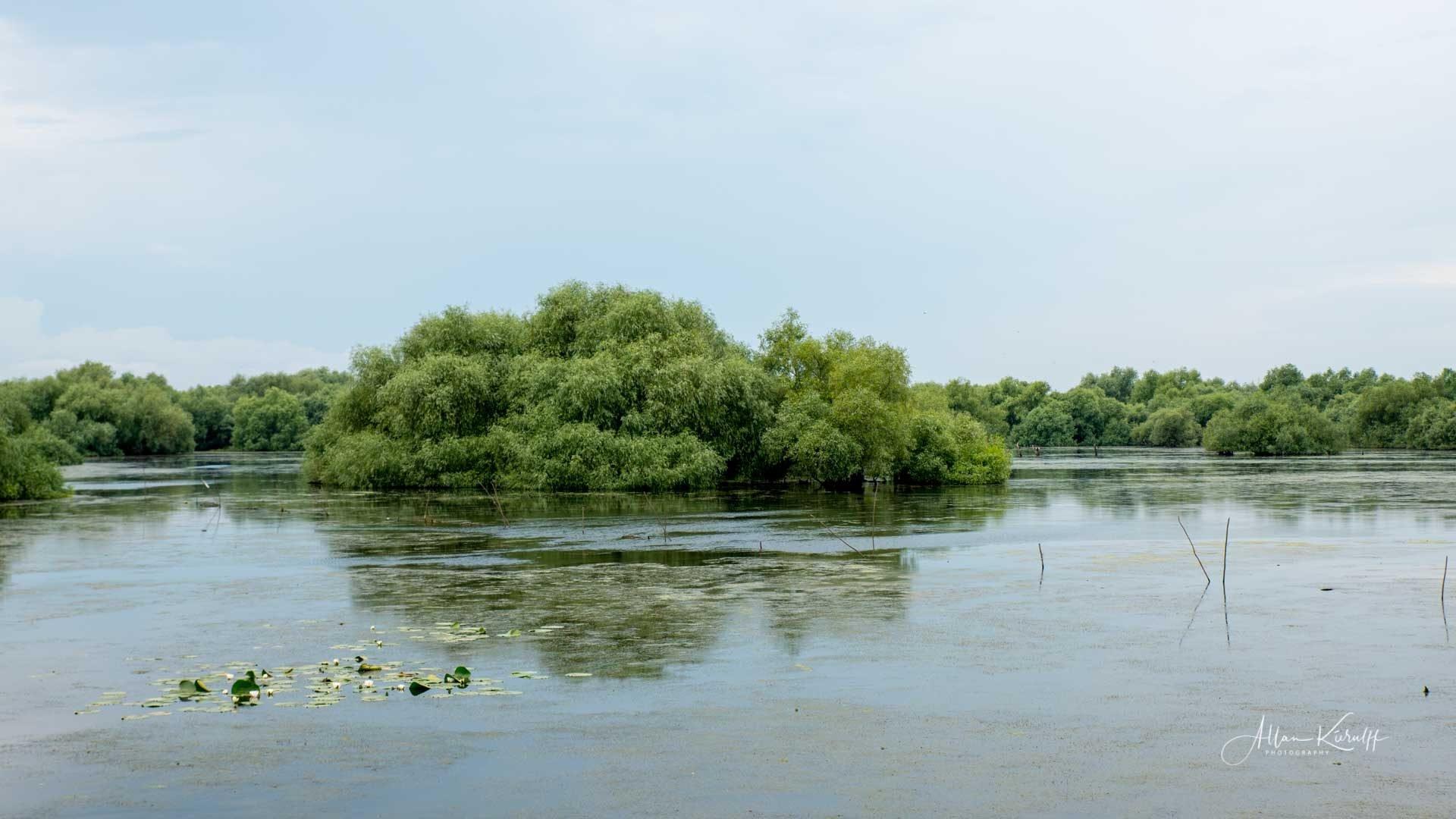 Donau Deltaet 40