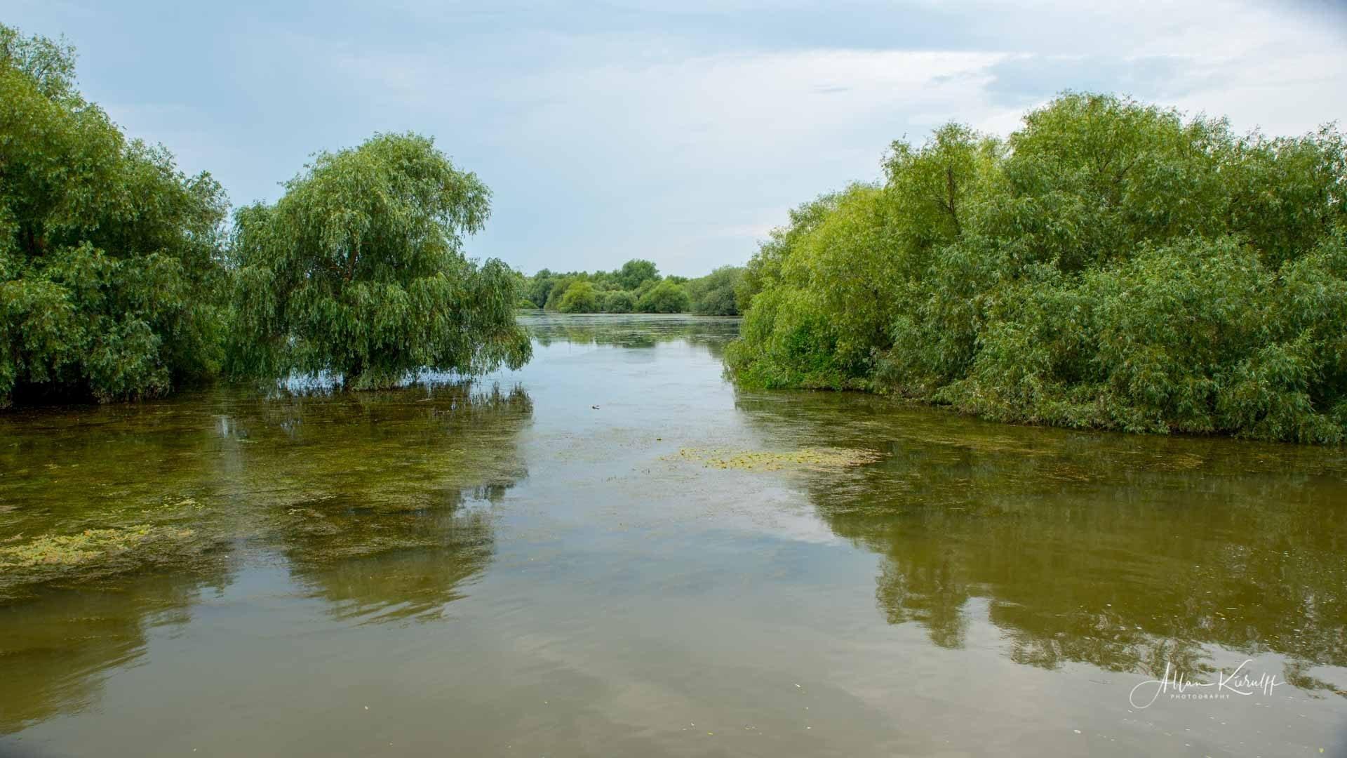 Donau Deltaet 41