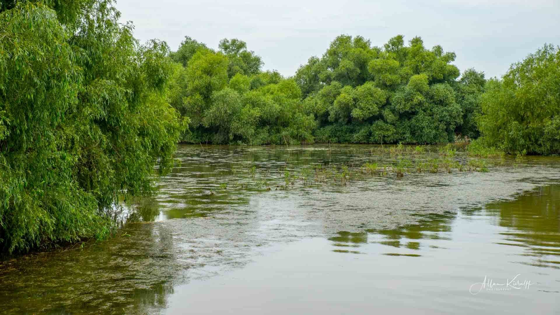 Donau Deltaet 42