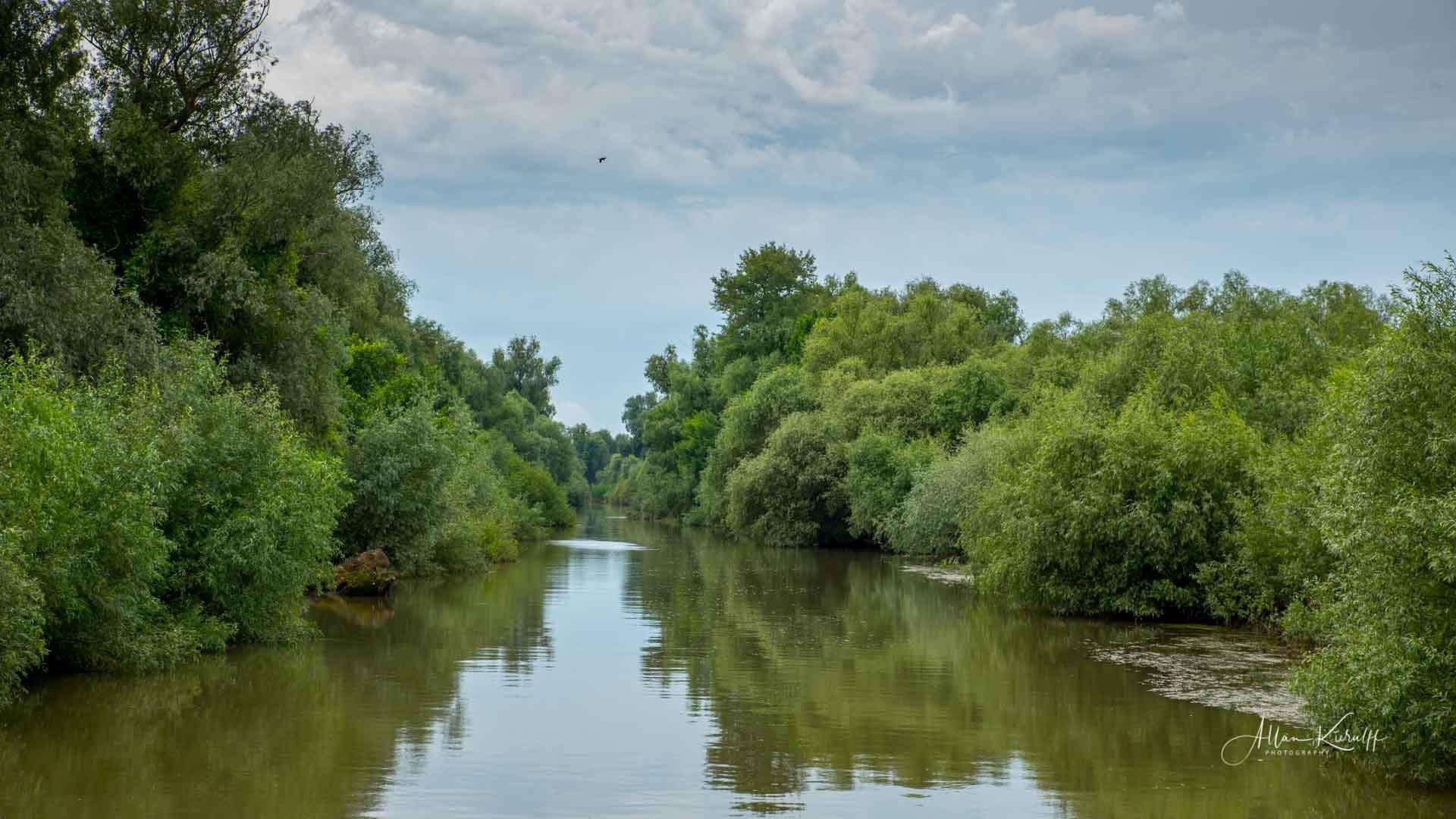 Donau Deltaet 43