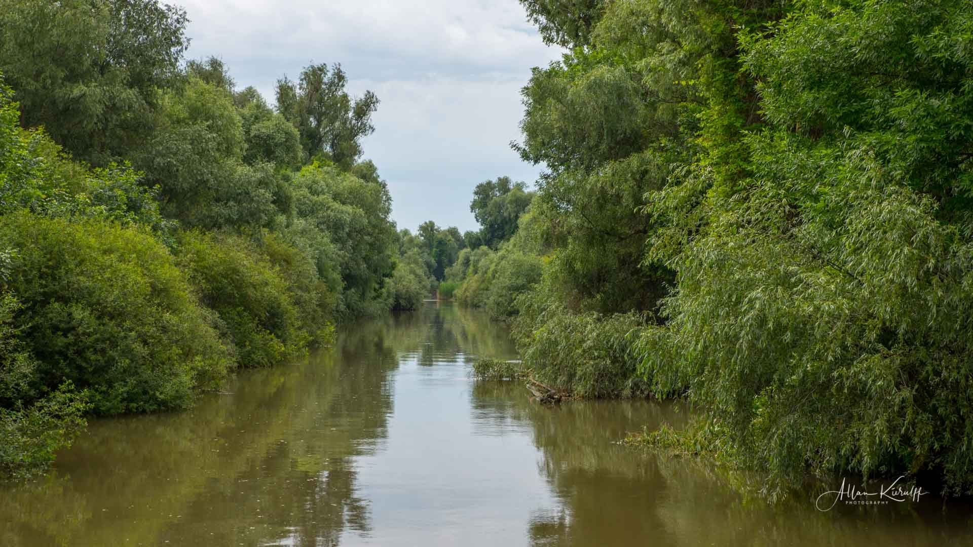 Donau Deltaet 44
