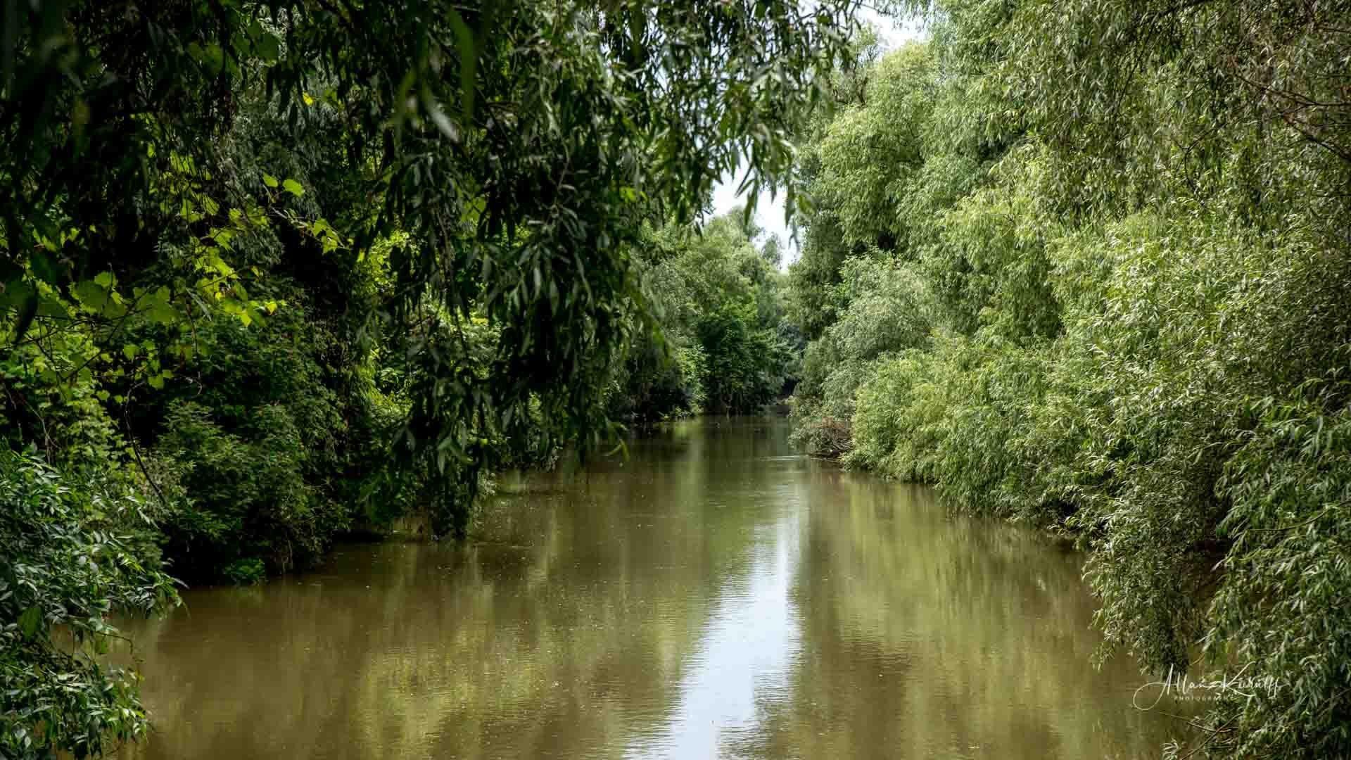 Donau Deltaet 46