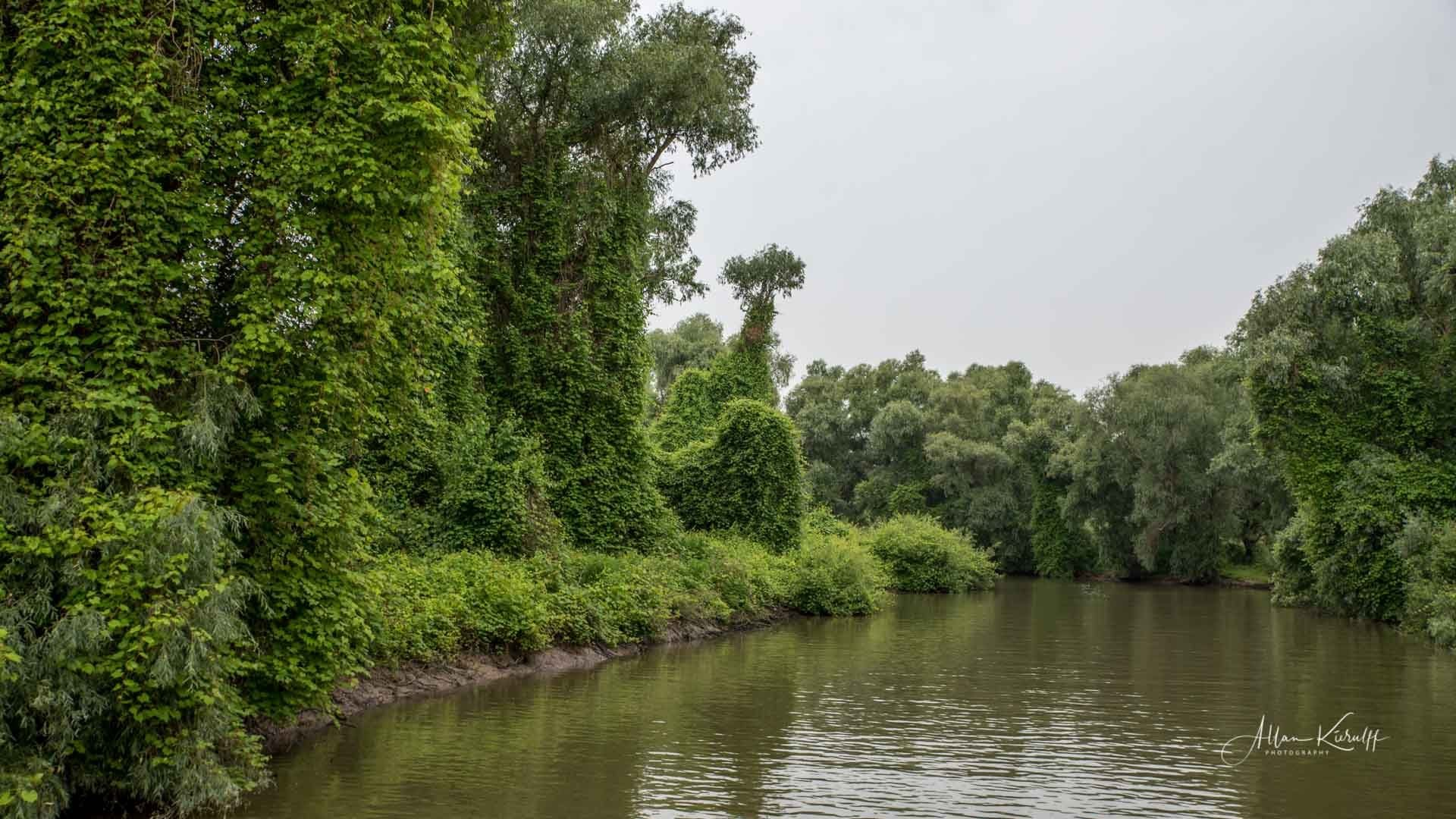 Donau Deltaet 47