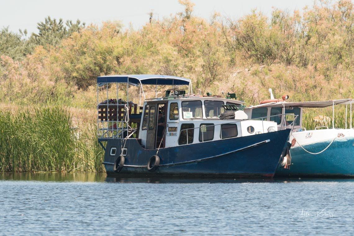 Donau Deltaet 8 1