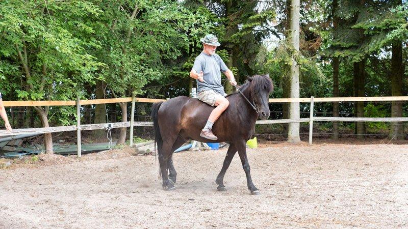 mand-på-mørk-hest-i-fold