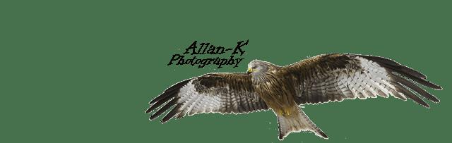 Fotografering bibliotekarkiv Logo 05