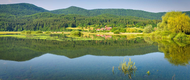 Lake Cerknica 1