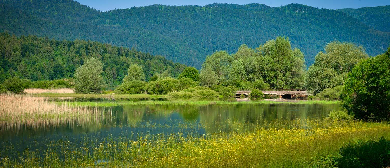 Lake Cerknica 5