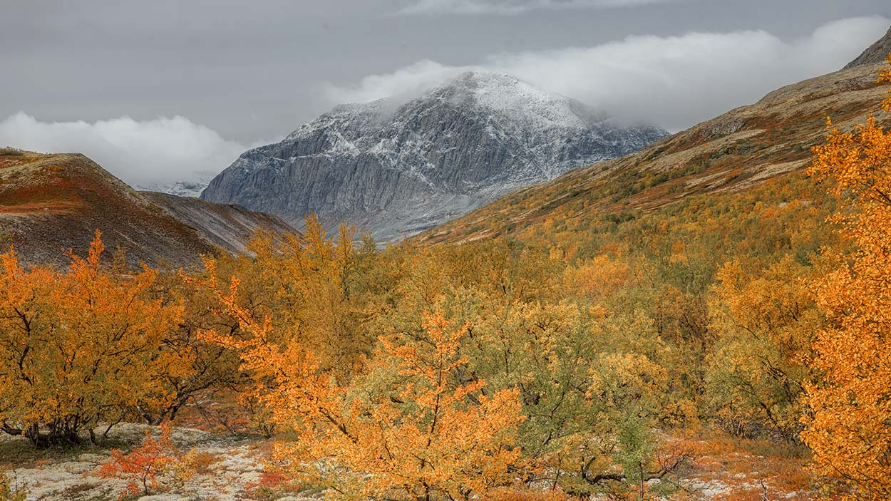 Dørålen Rondane Norge 3
