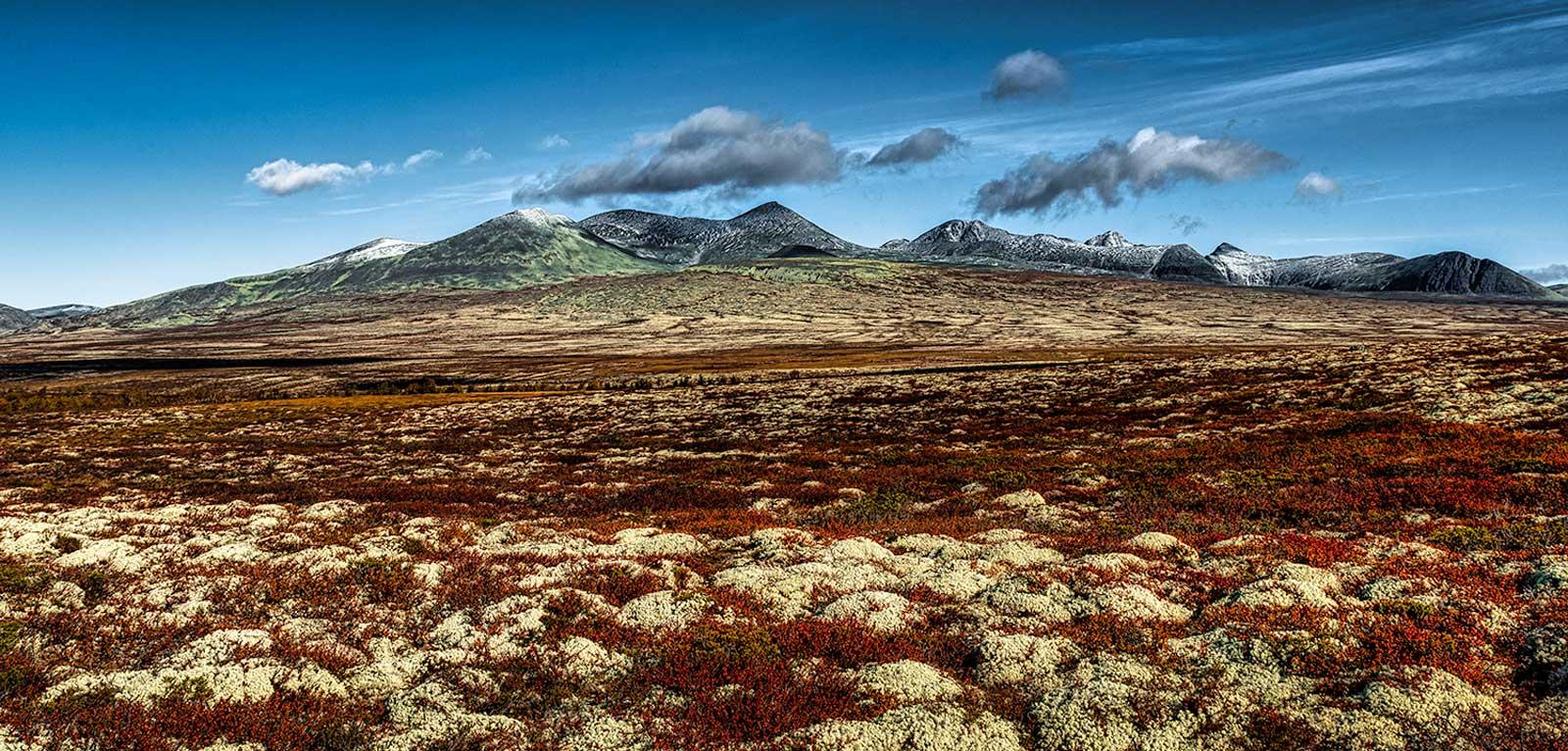 Rondane Nationalpark 11