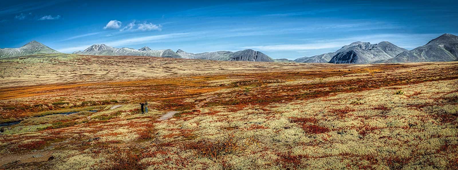 Rondane Nationalpark 15