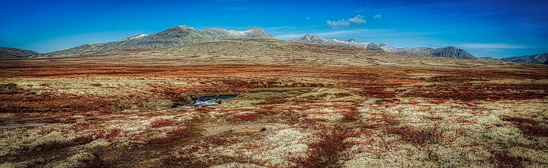 Rondane Nationalpark 16