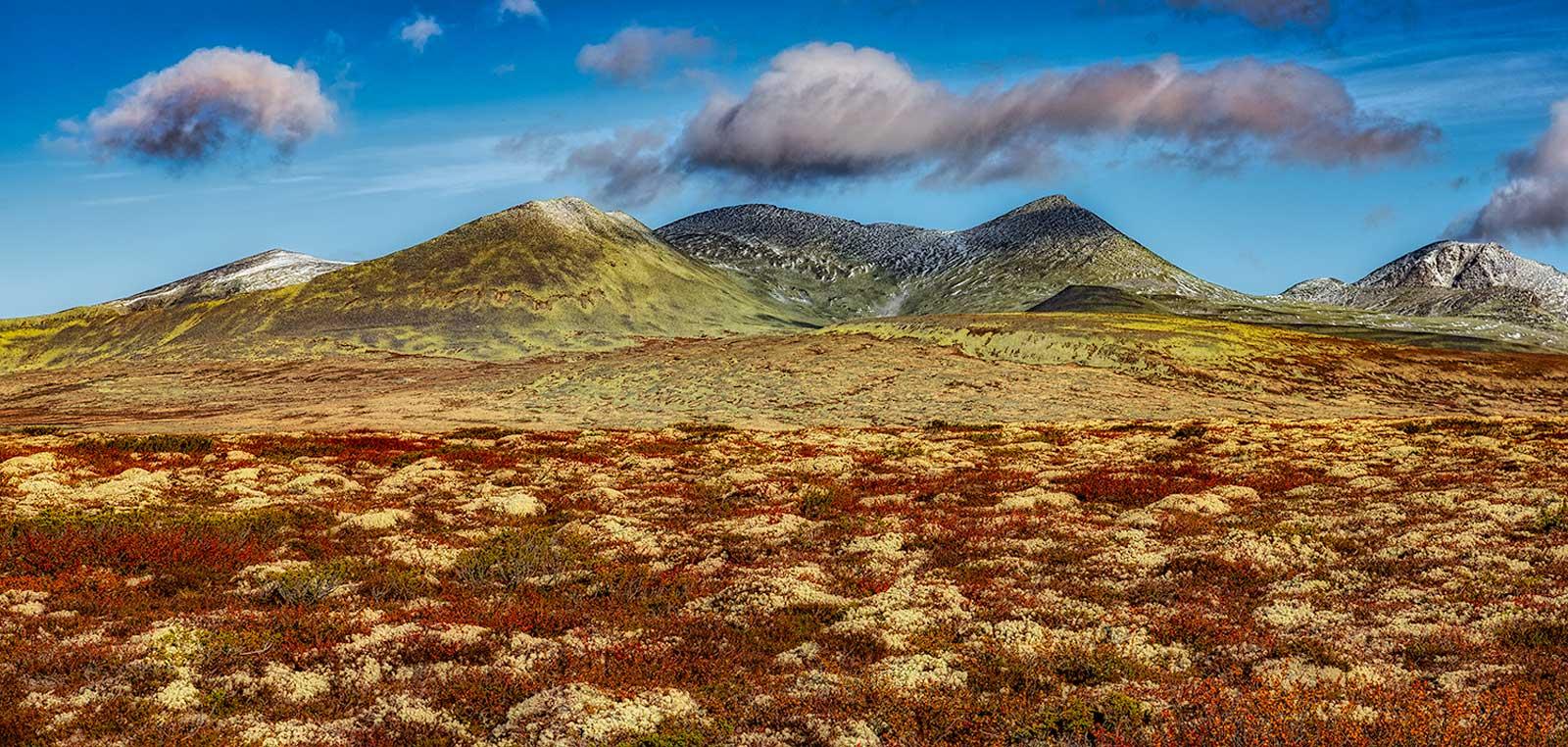 Rondane National Park