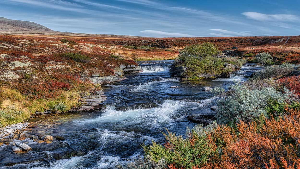 Rondane Nationalpark 30