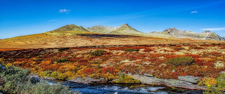 Rondane Nationalpark 31