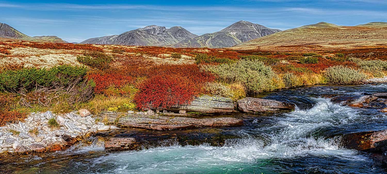 Rondane Nationalpark 32