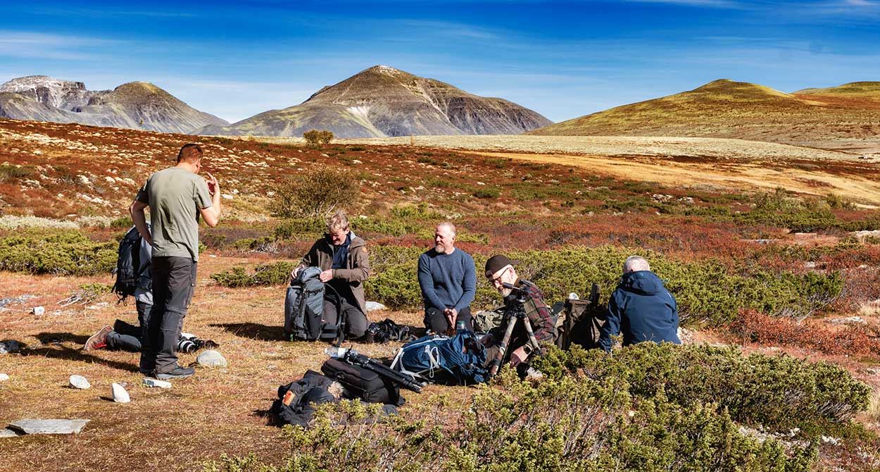 Rondane Nationalpark 7