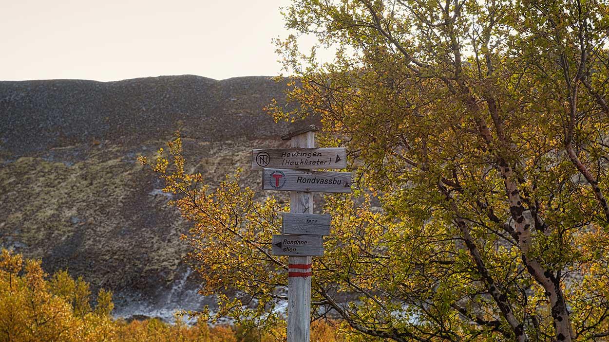 Rondanestien Norge 1