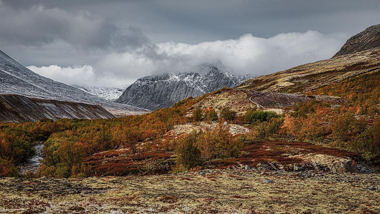 Rondanestien Norge 11