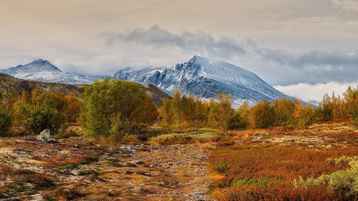 Rondanestien Norge 12
