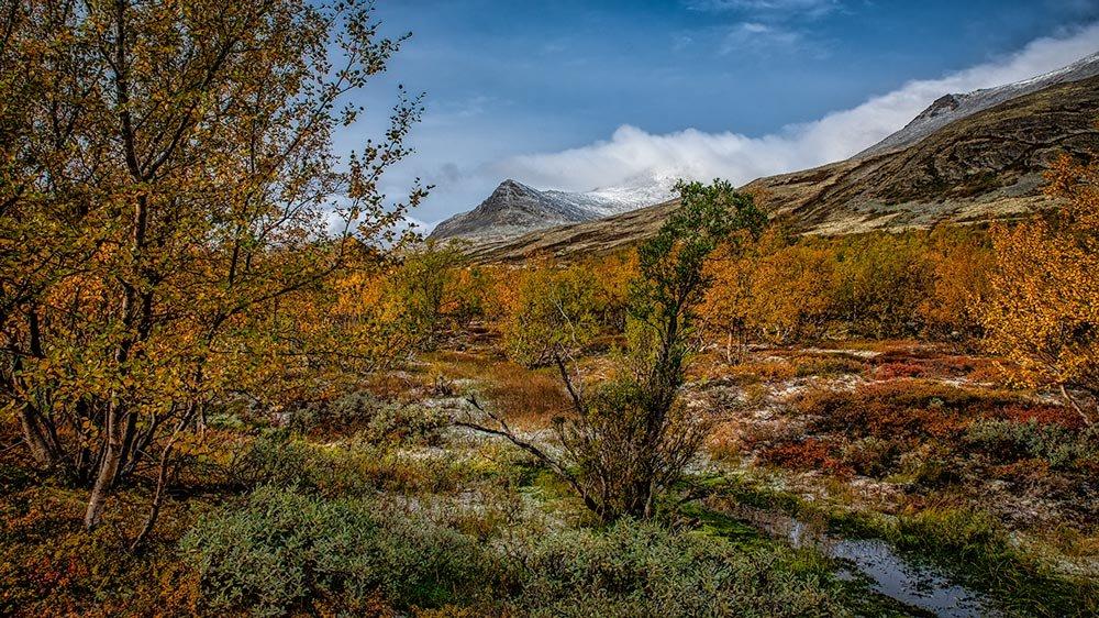 Rondanestien Norge 13