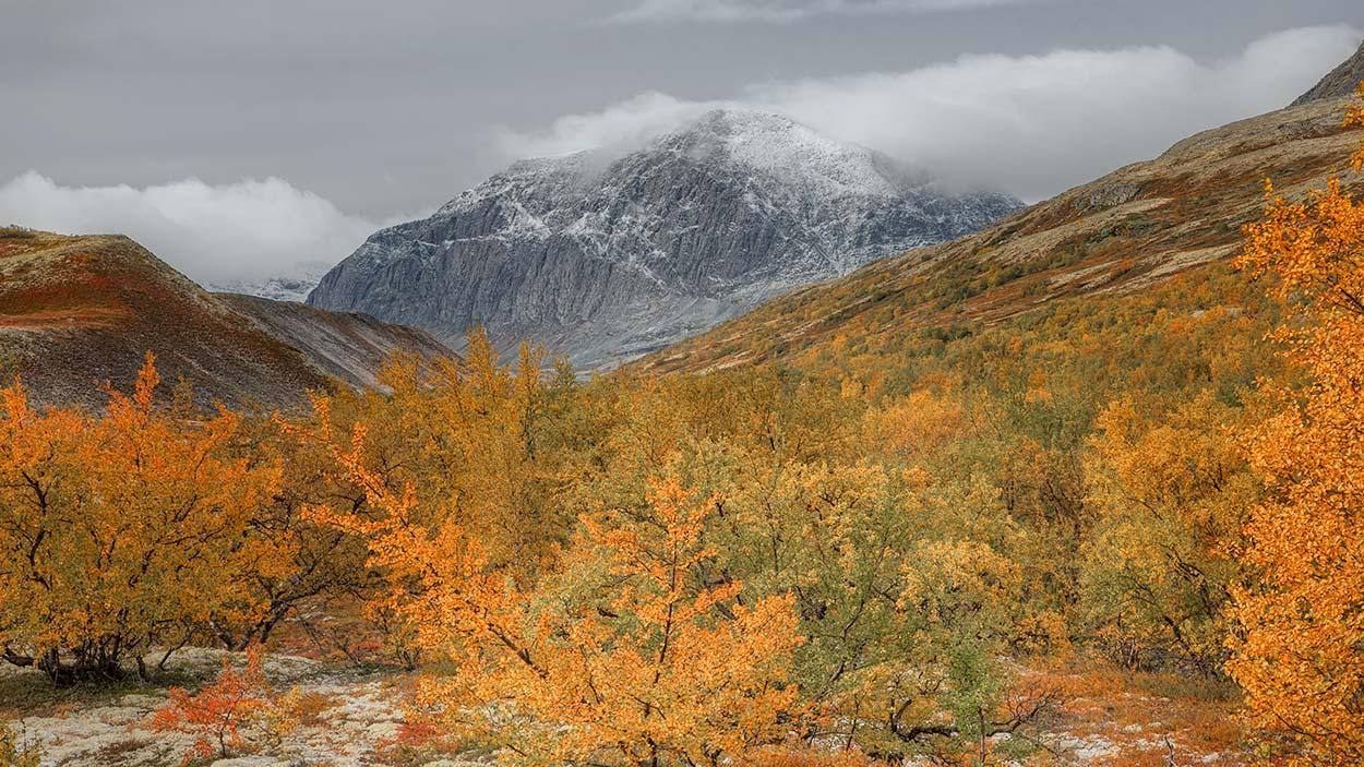 Rondanestien Norge 14
