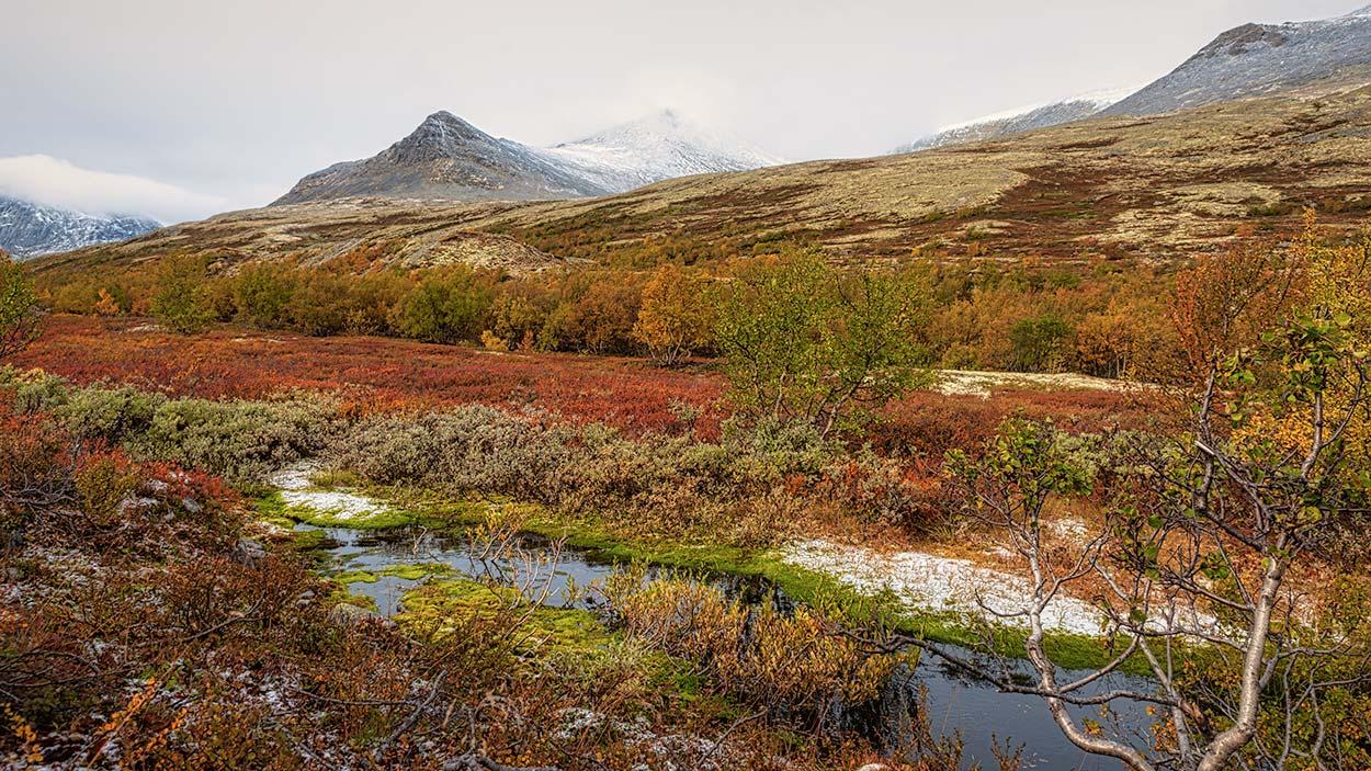 Rondanestien Norge 4