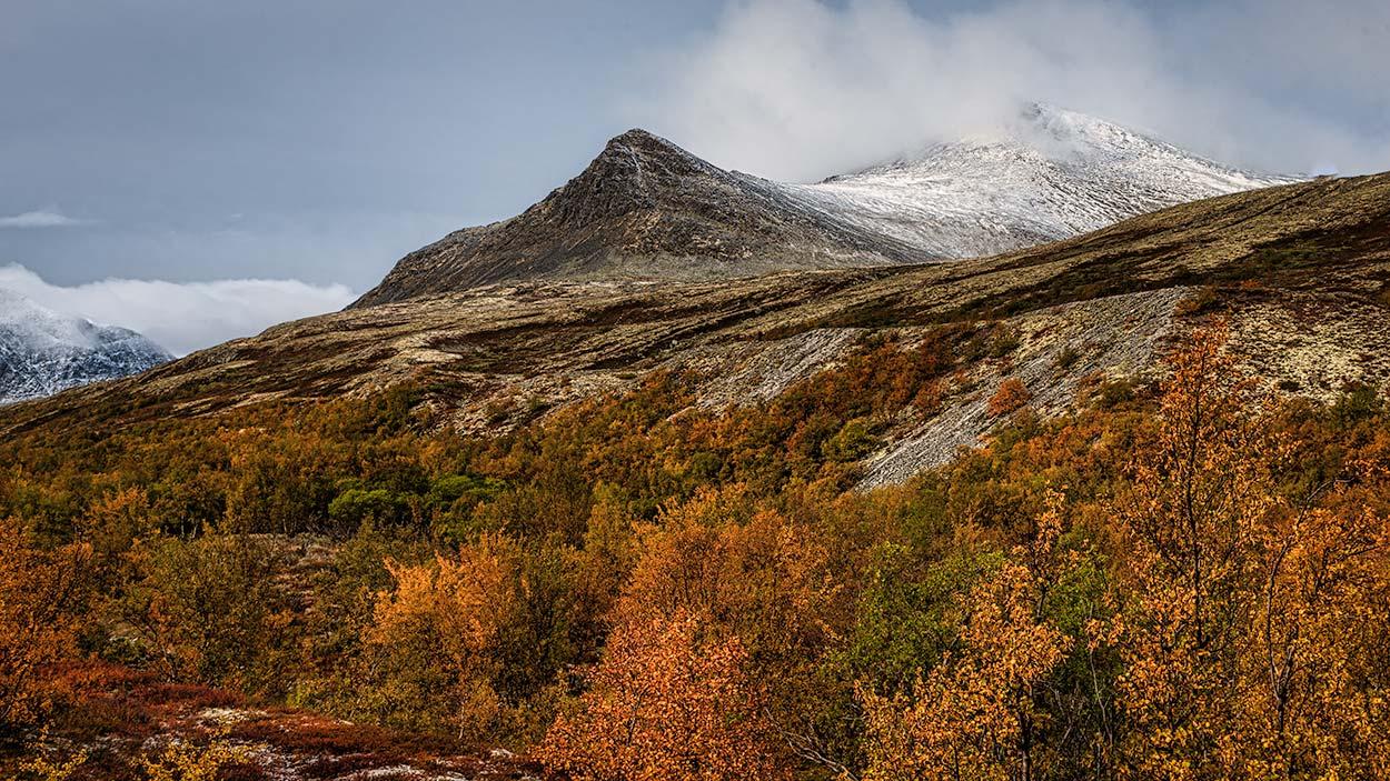 Rondanestien Norge 5