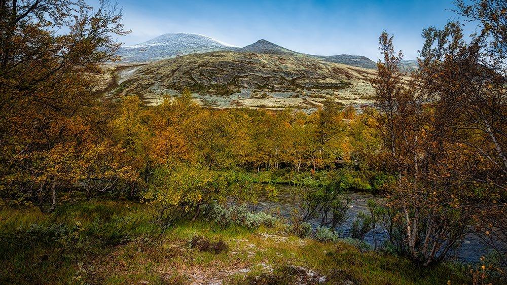 Rondanestien Norge 7